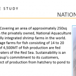 National-Aquaculture-group